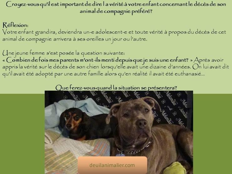 Citation Deuil Animalier teckel Lynne Pion