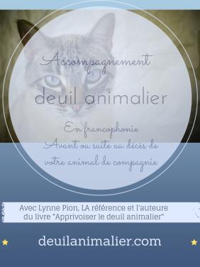 Accompagnement au deuil animalier 2 avec Lynne Pion
