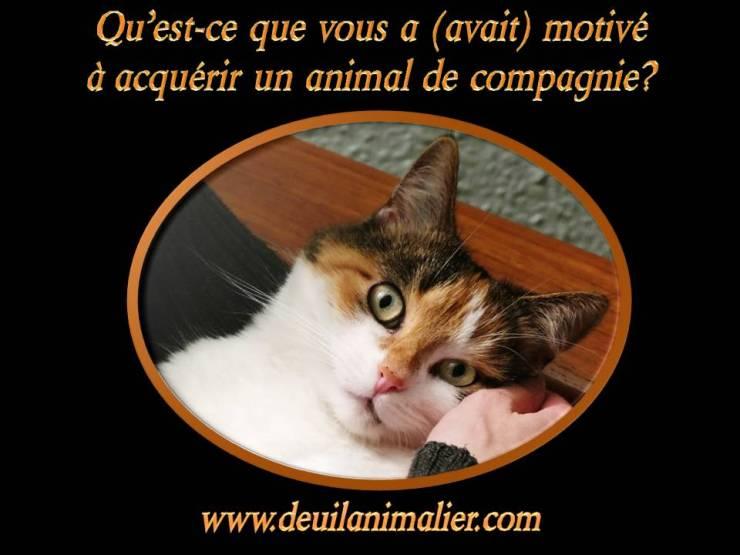 deuil animalier motivé à acquérir animal Lynne Pion
