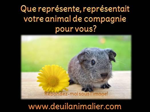 Deuil animalier Que représentait-il Lynne Pion