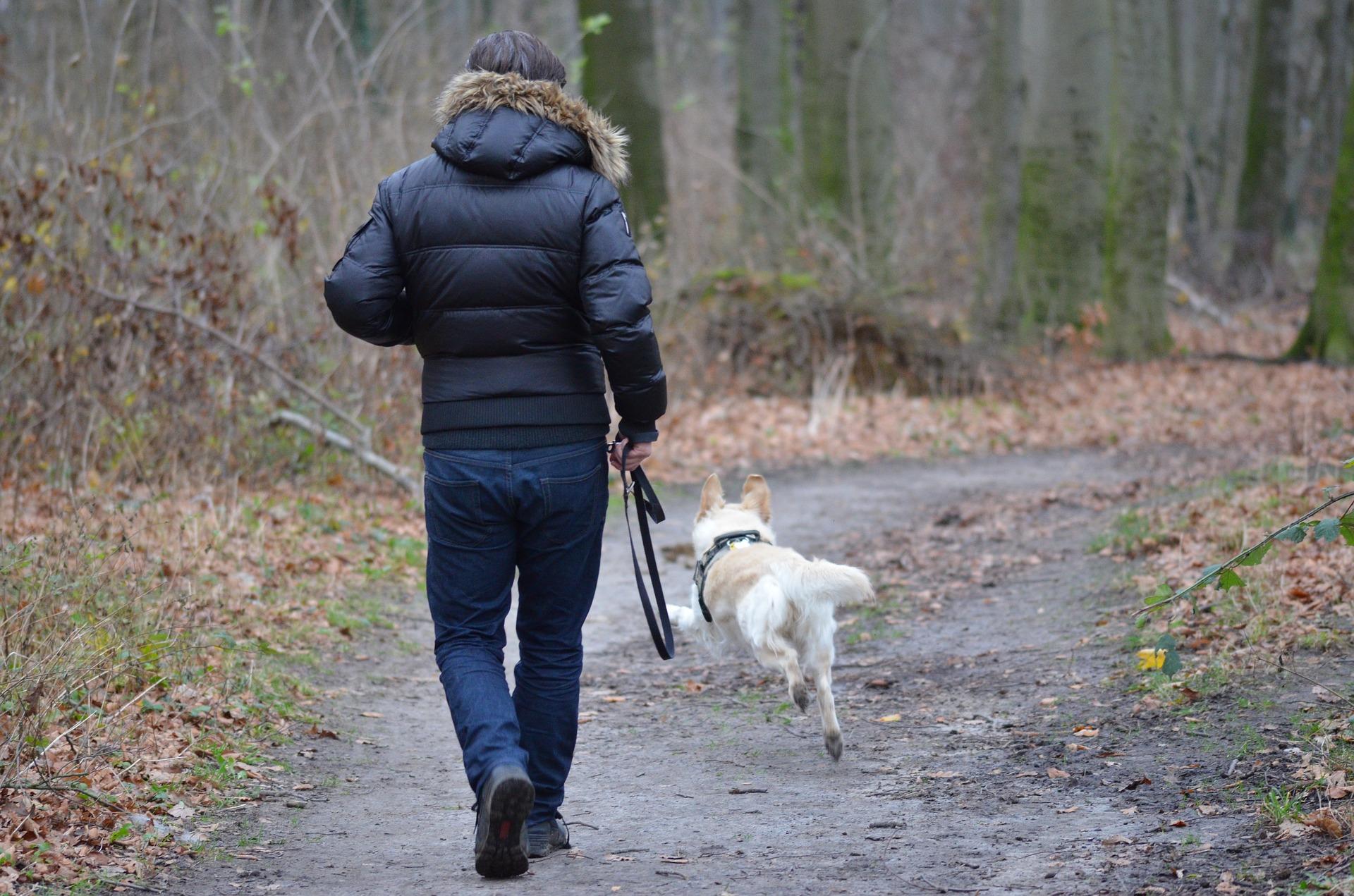 À ceux qui ont à dire adieu à un chien