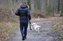 deuil de mon chien c'est par Lynne Pion.jpg